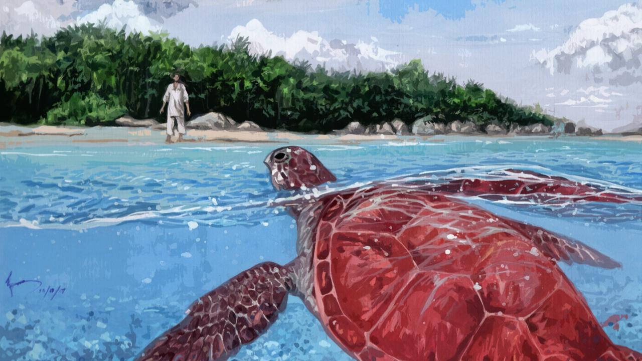 Het rode schildpad